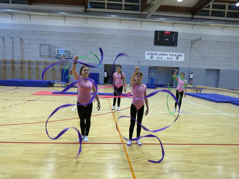 Dan škole - revijalni nastup gimnastičara