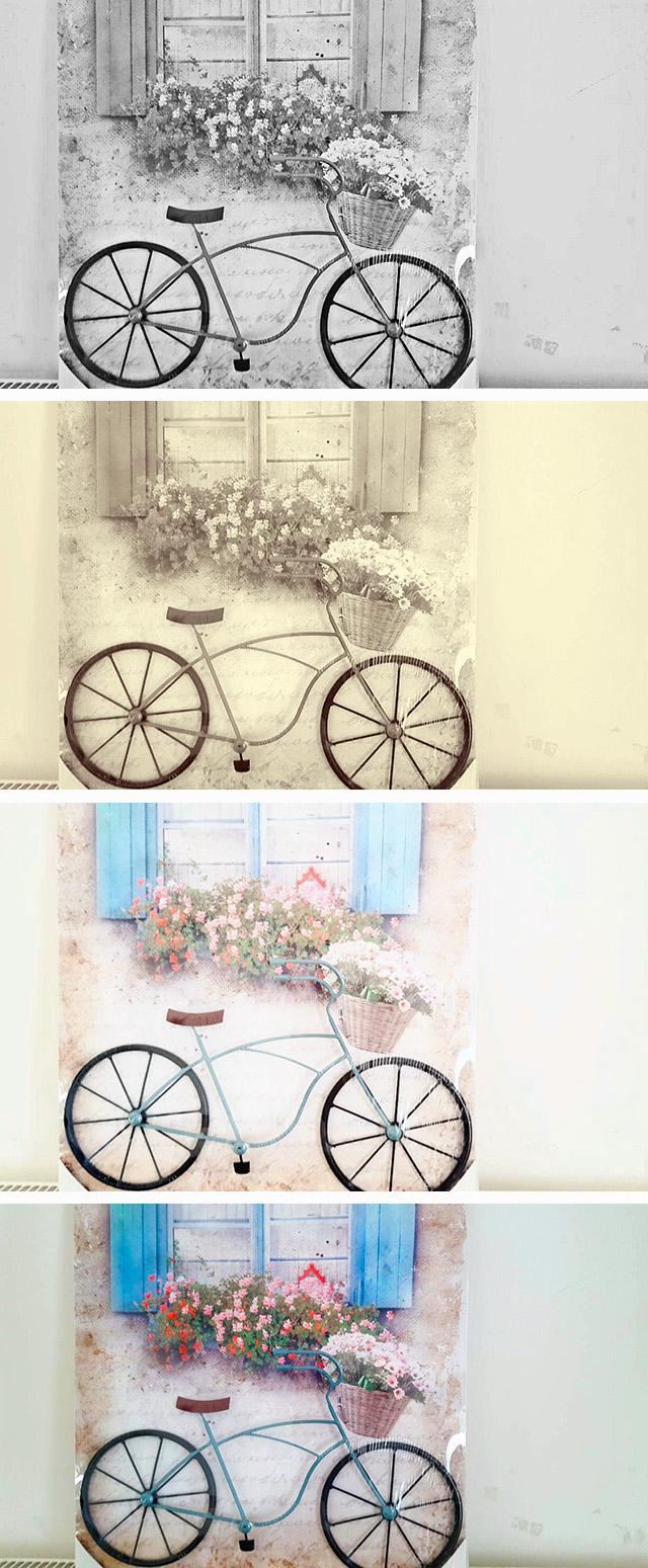 Putovanje jednog bicikla